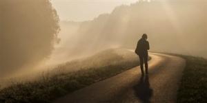 11350-fog-mist-walking-journey-path.400w.tn